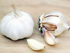Garlic Chinese Bulb