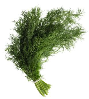 Dill 100GM Pack