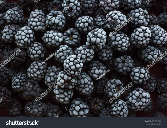 Frozen Black Berries