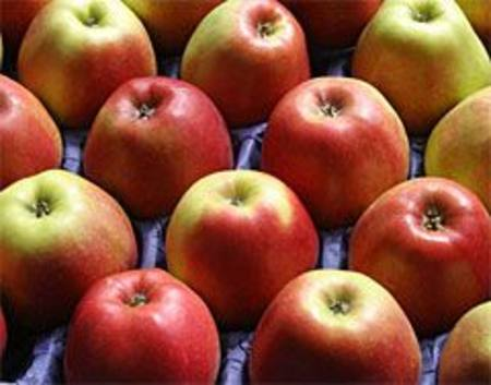 Apples Small RED 150-180CT