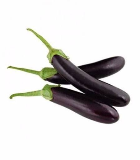 Eggplant Imported Long