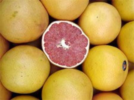 Grapefruit Imported