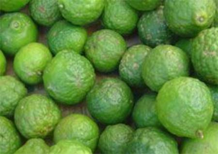 Kafir Lime Leaves 100GM Pack