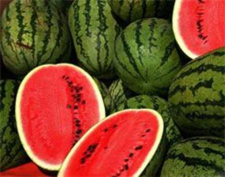 Melon Watermelon Imported