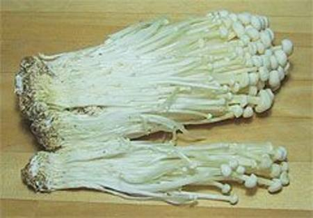 Buy Mushrooms Enoki/taki in NZ.