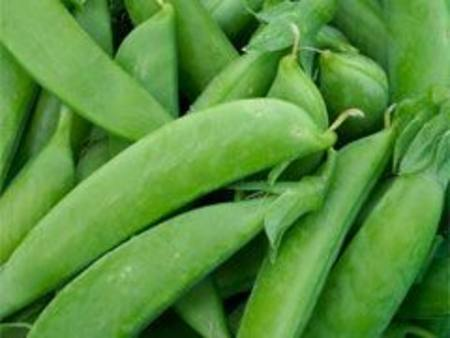 Peas Sugar Snap Imported 100GM PKT