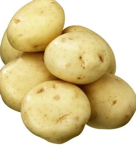 Potatoes Gourmet Washed