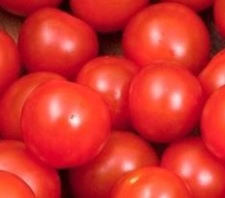 Tomatoes RED Cherry