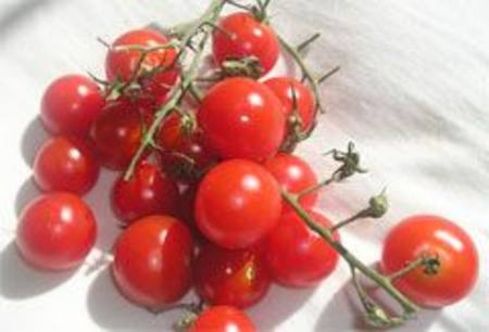 Buy Tomatoes RED Cherry Vine in NZ.