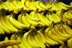 Buy Bananas Ripe Imported in NZ New Zealand.