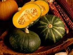 Buy Buttercup/super Market Squash in NZ New Zealand.