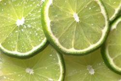 Buy Limes Imported in NZ New Zealand.