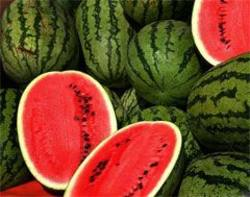 Buy Melon Watermelon Imported in NZ New Zealand.