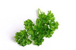 Buy Parsley Curly KG in NZ New Zealand.