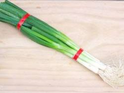 Buy Spring Onion in NZ New Zealand.